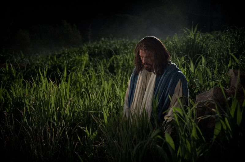 christ in gethsemane Jesus and You